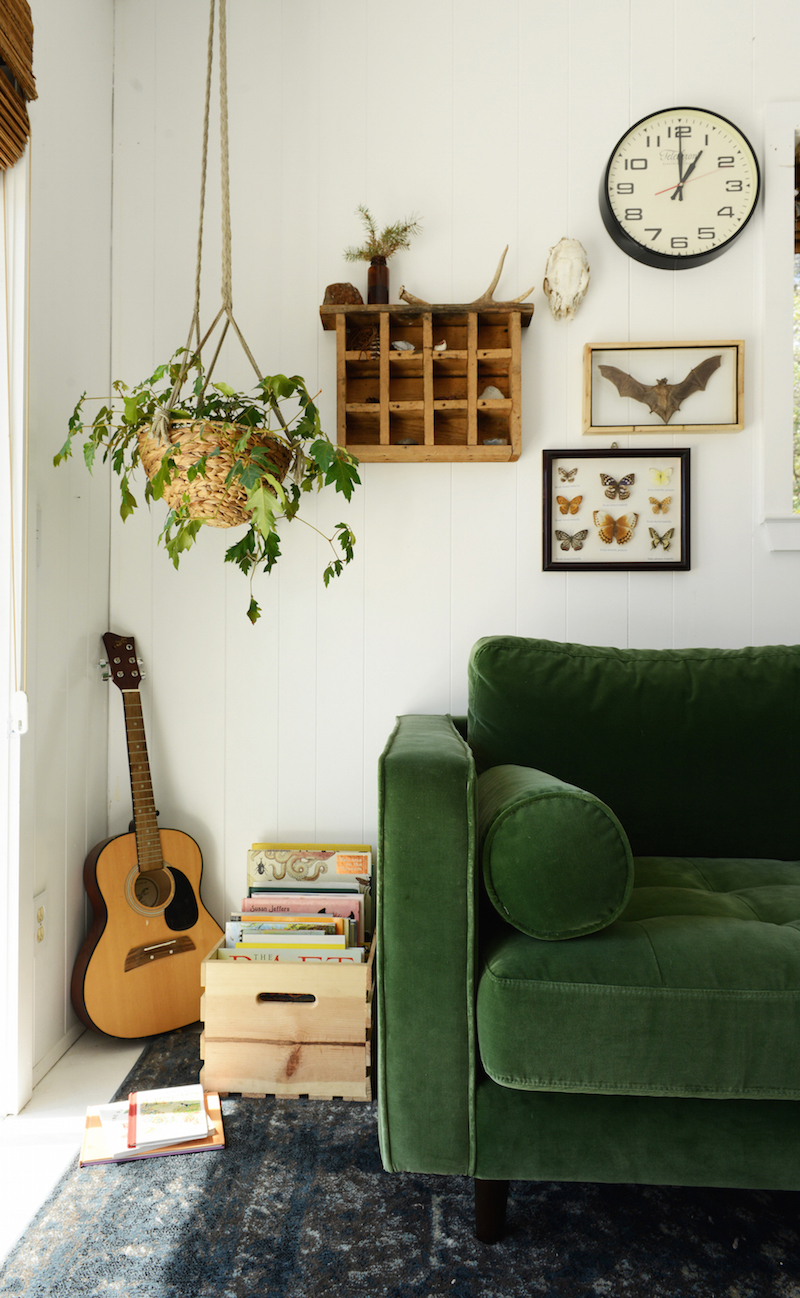 Green Velvet Sofa with Hanging House Plant