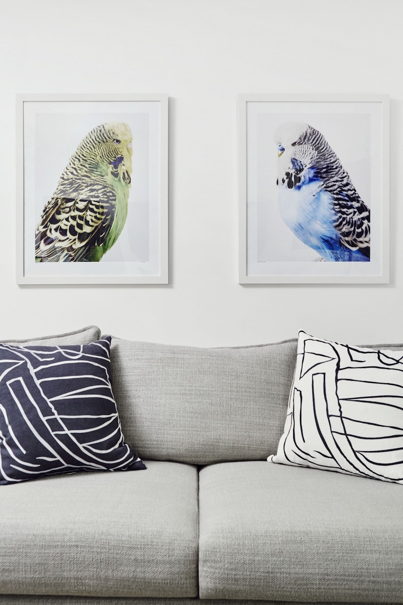Jacey Duprie's Grey Couch with Bird Artwork Damsel in Dior