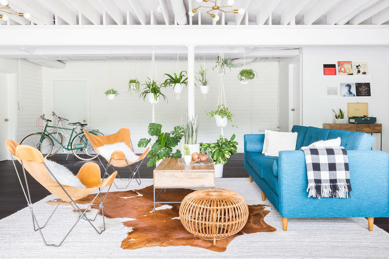 Hanging plants living room with blue couch via Alyssa Rosenheck