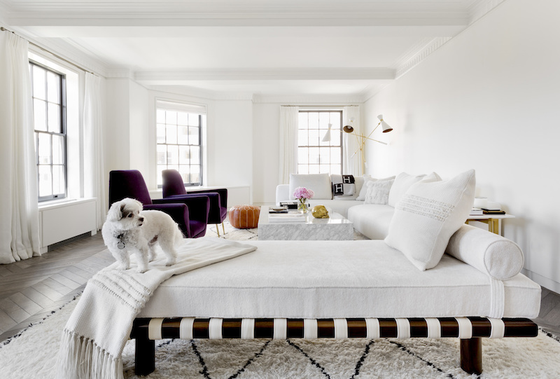 Living room with white chaise and purple velvet chairs