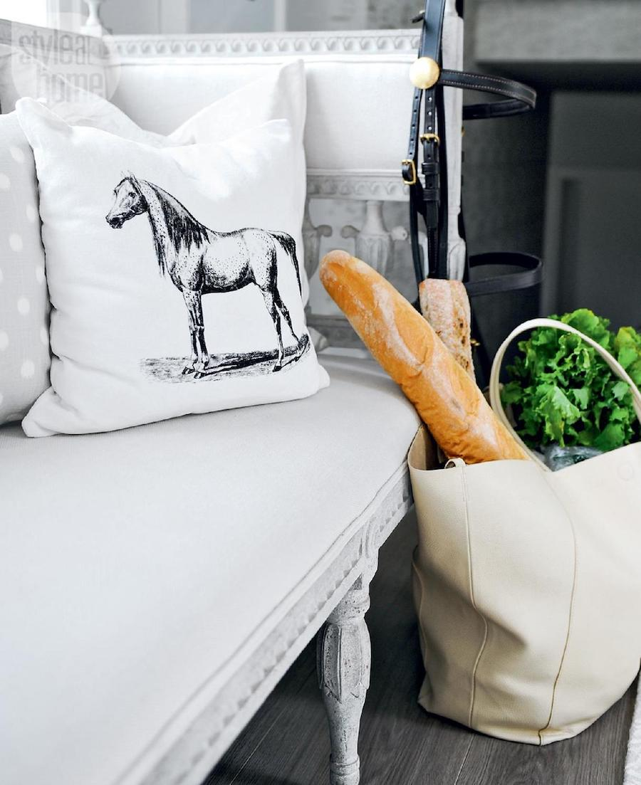 Horse pillow and french sofa