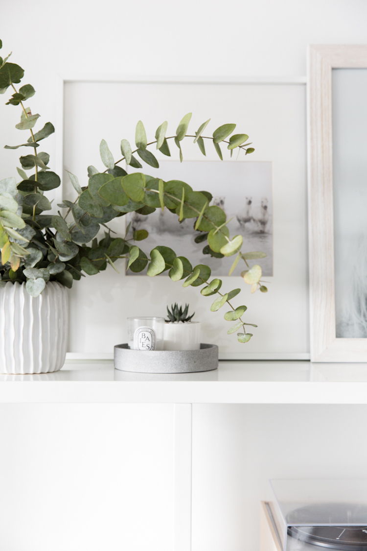 House plants with diptyque candles