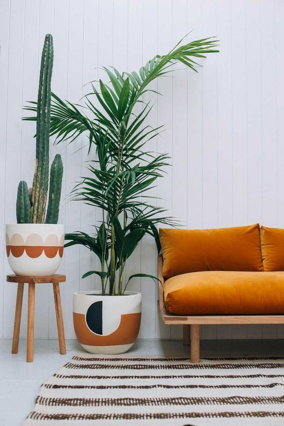 Indoor palm next to orange sofa