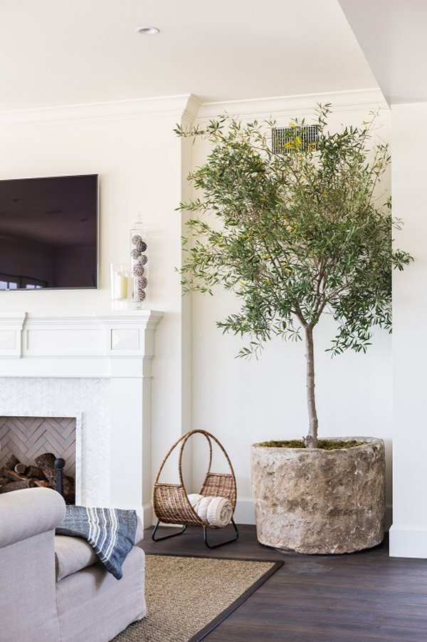 Interior Tree near fireplace