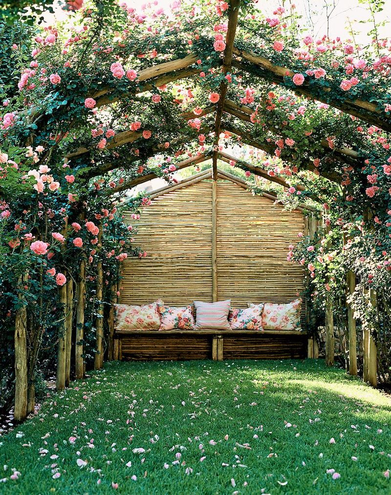 Secluded garden with flowers growing on rose trellis roof