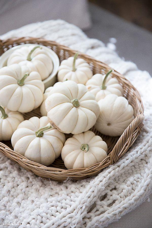 White Pumpkins In A Basket Simple Fall Decor via Ellaclaireinspired